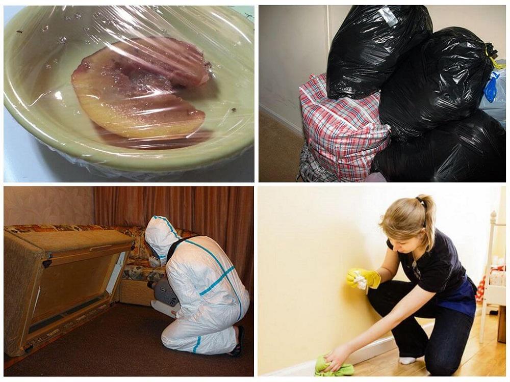 подготовка к дезинсекции череповец